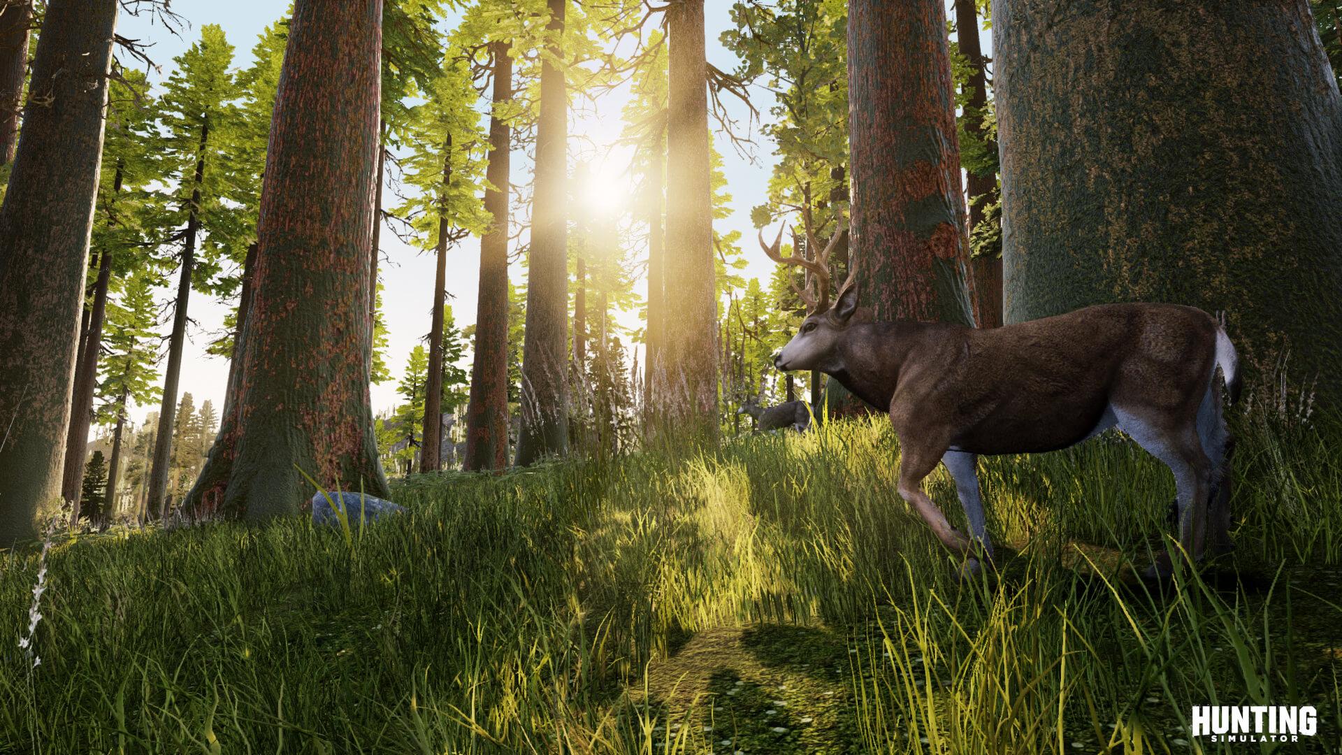 Hunting Simulator traz muita diversidade com dezenas de animais, armas, ambientes e centenas de missões no modo Campanha.